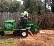 stump-grinding-service